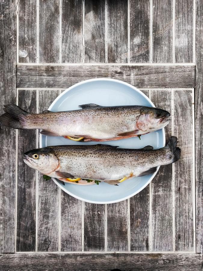 الاسماك الزيتية تخفف من حدة الصداع النصفي
