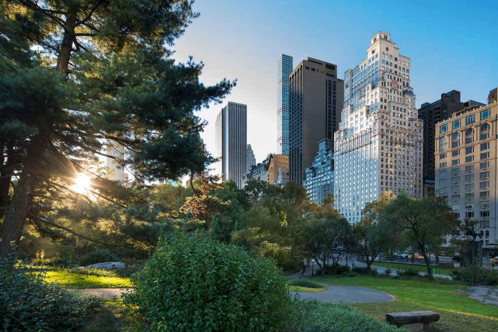 فندق ريتز كارلتون نيويورك سنترال بارك The Ritz-Carlton New York, Central Park