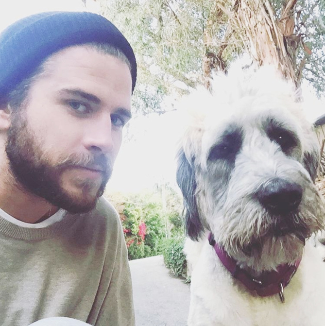 After dating for nearly a decade Miley Cyrus and Liam Hemsworth may finally be ready to tie the knot The power couple has been engaged for a few years but a source