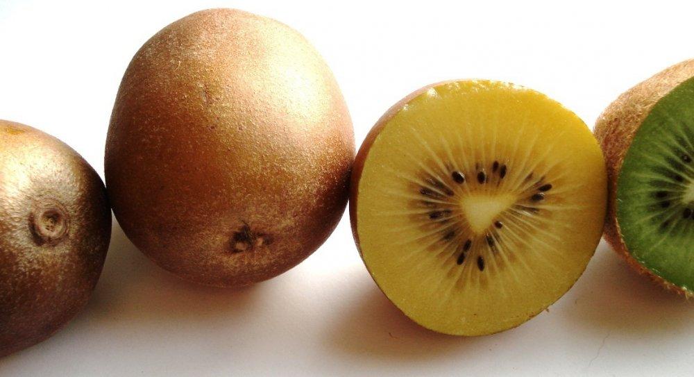 الكيوي الأصفر غني بفيتانين سي أكثر من الكيوي الأخضر