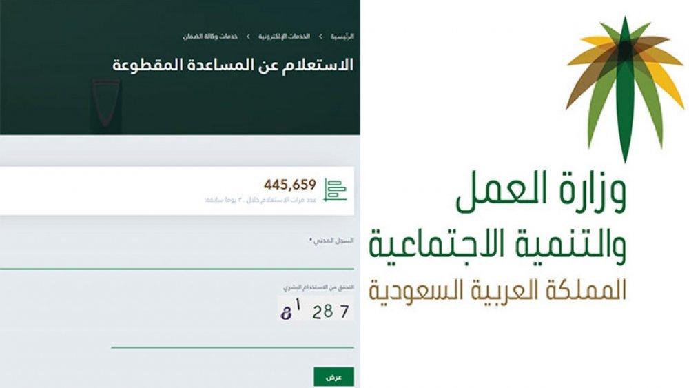 رابط موقع وزارة العمل والتنمية تحديث بيانات مستفيدي الضمان