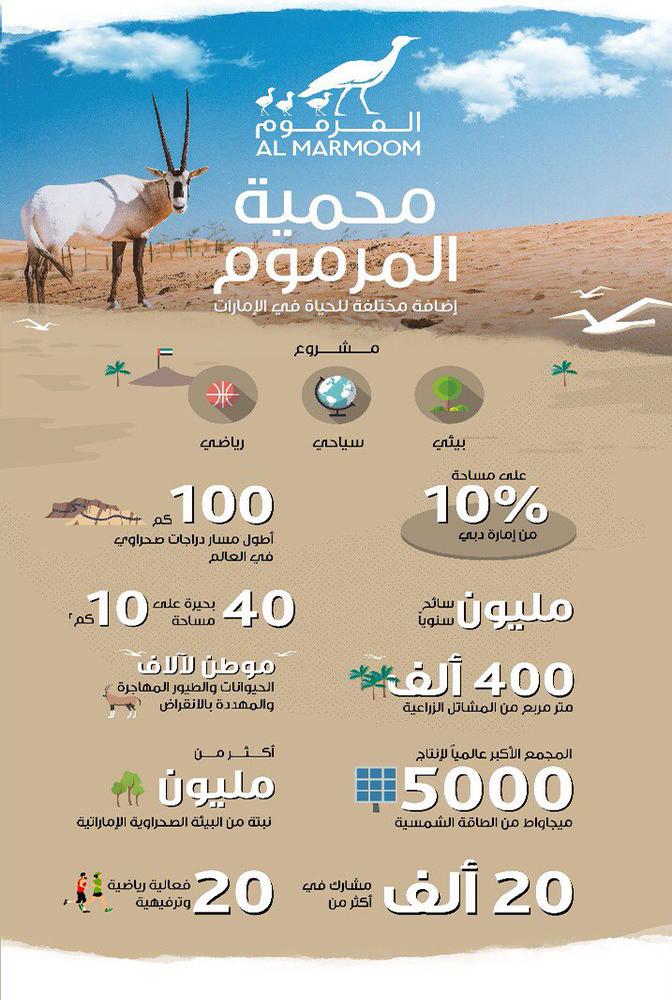 محمية المرموم في دبي .. أكبر وجهة بيئية سياحية - مجلة هي