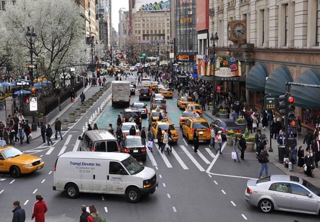 الحية في المدن تؤثر سلبا على الصحة العامة